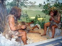 musee-prehistoire-quinson