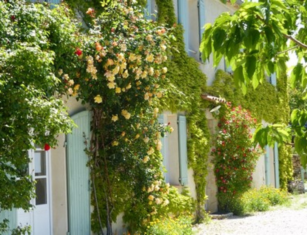 Booking your holiday house in Moustiers Sainte Marie Verdon