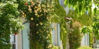 gite-bedandbreakfast-verdon